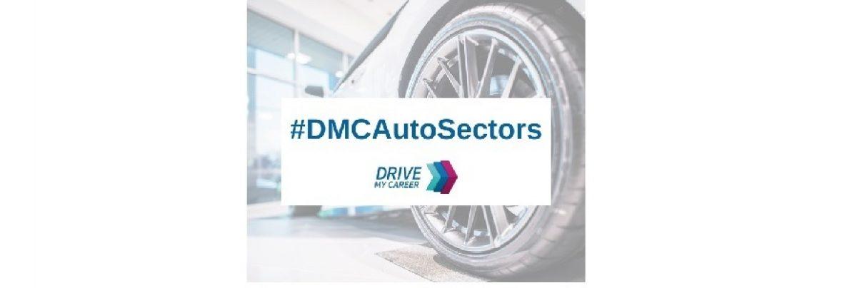 DMCAuto Sectors Large