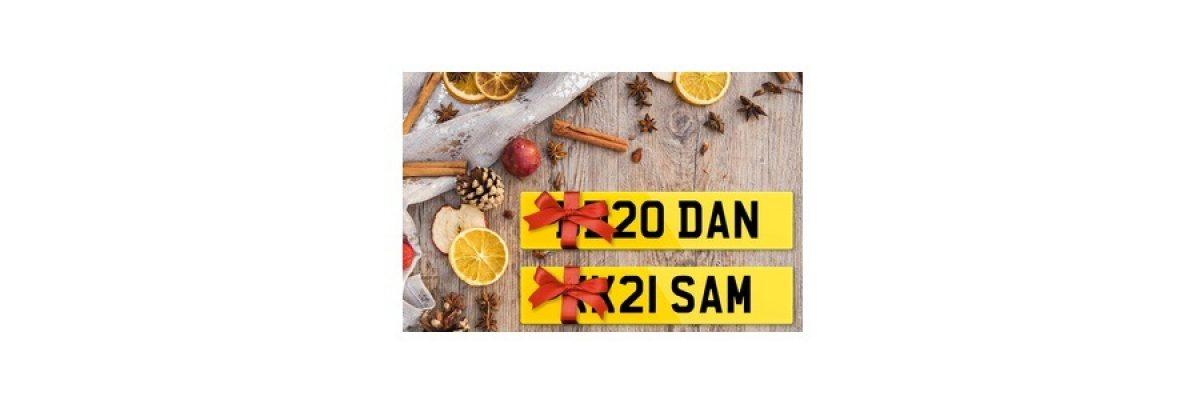 Sam Dan Large
